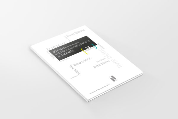 livre blanc IPS 2013